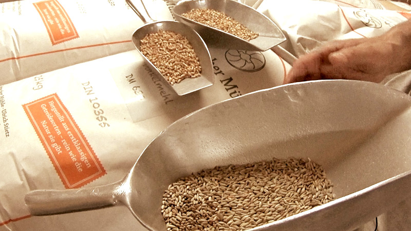 Vom Korn zum Mehl, vom Müller erklärt